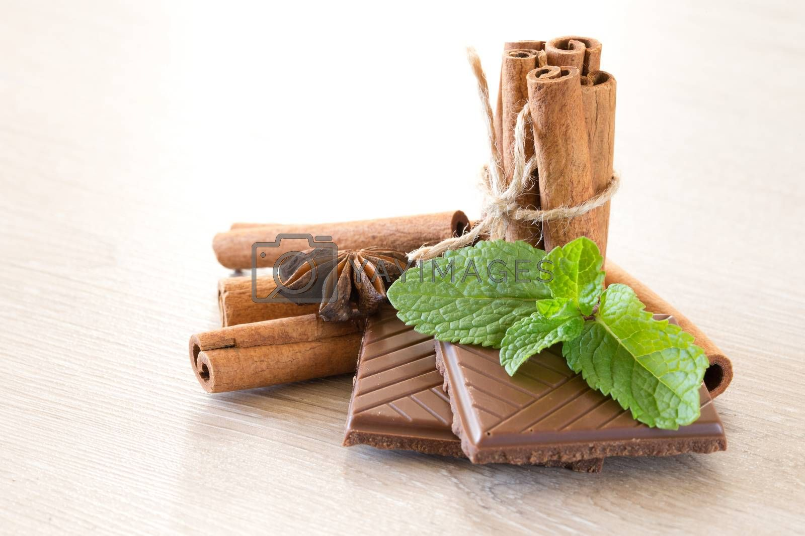 Mint with cinnamon  by Pakhnyushchyy