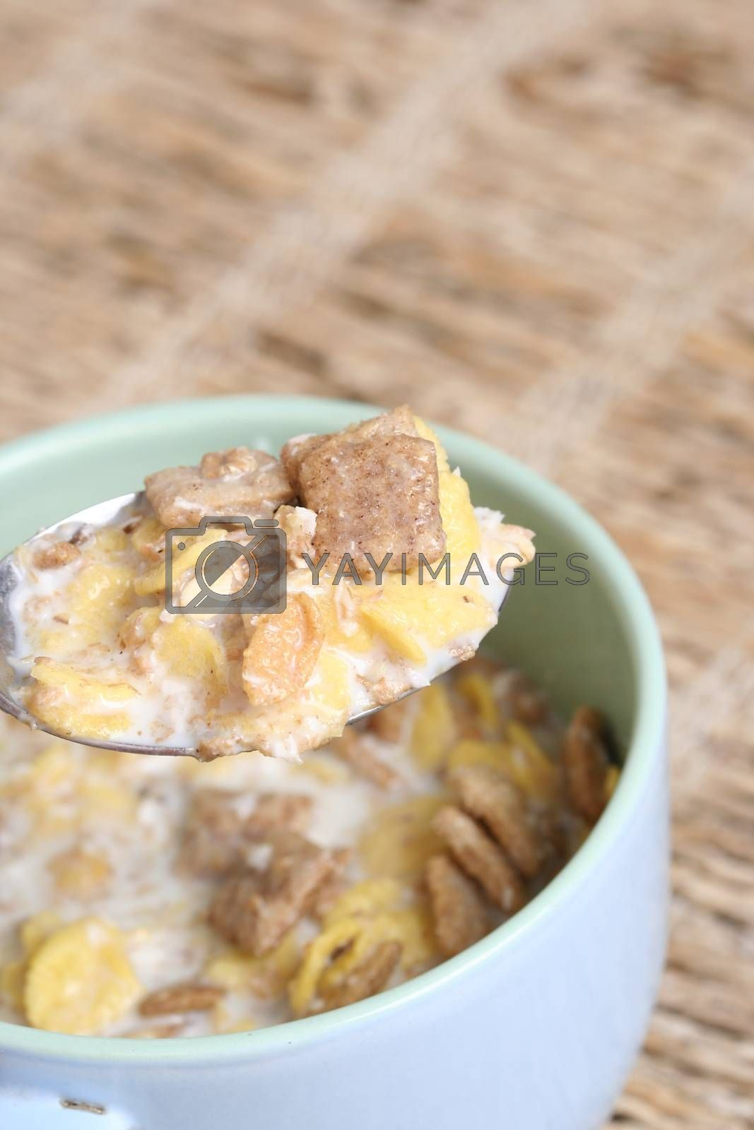 Crunchy breakfast cereals  in a blue bowl with a spoon .