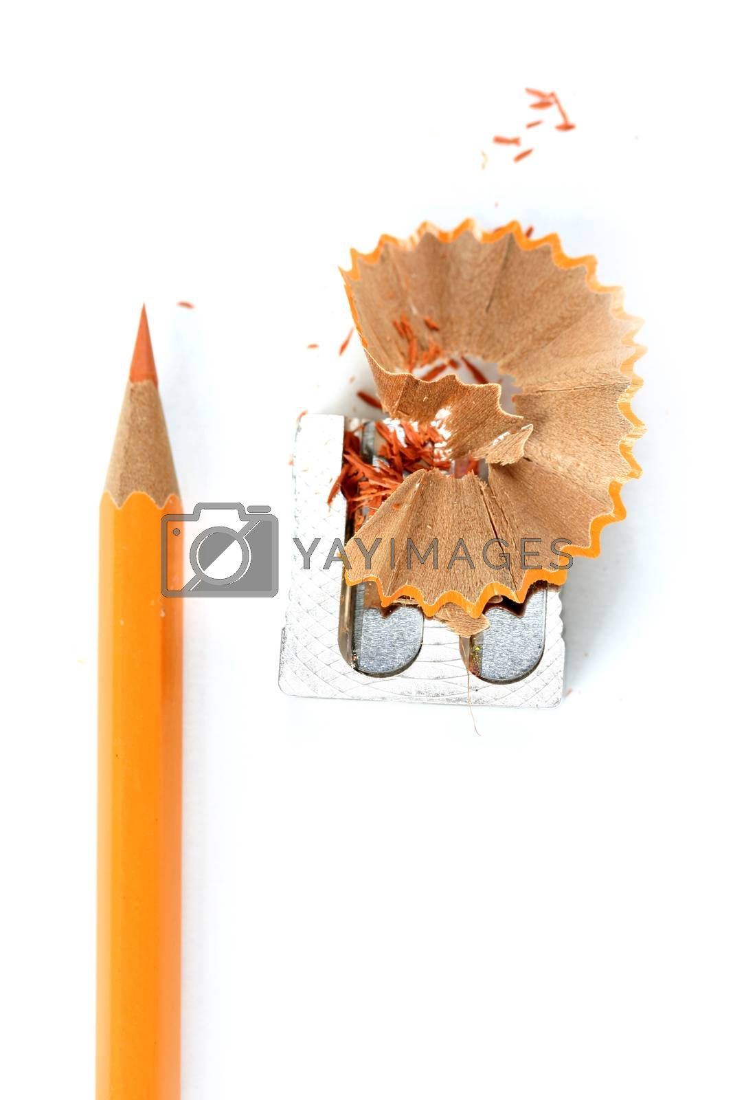 Close-up picture of pencil and sharpener.