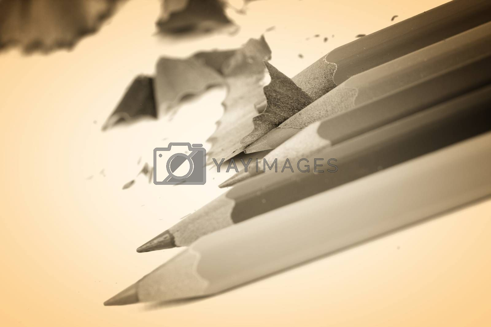 Close-up pencil. Very good details and colors.