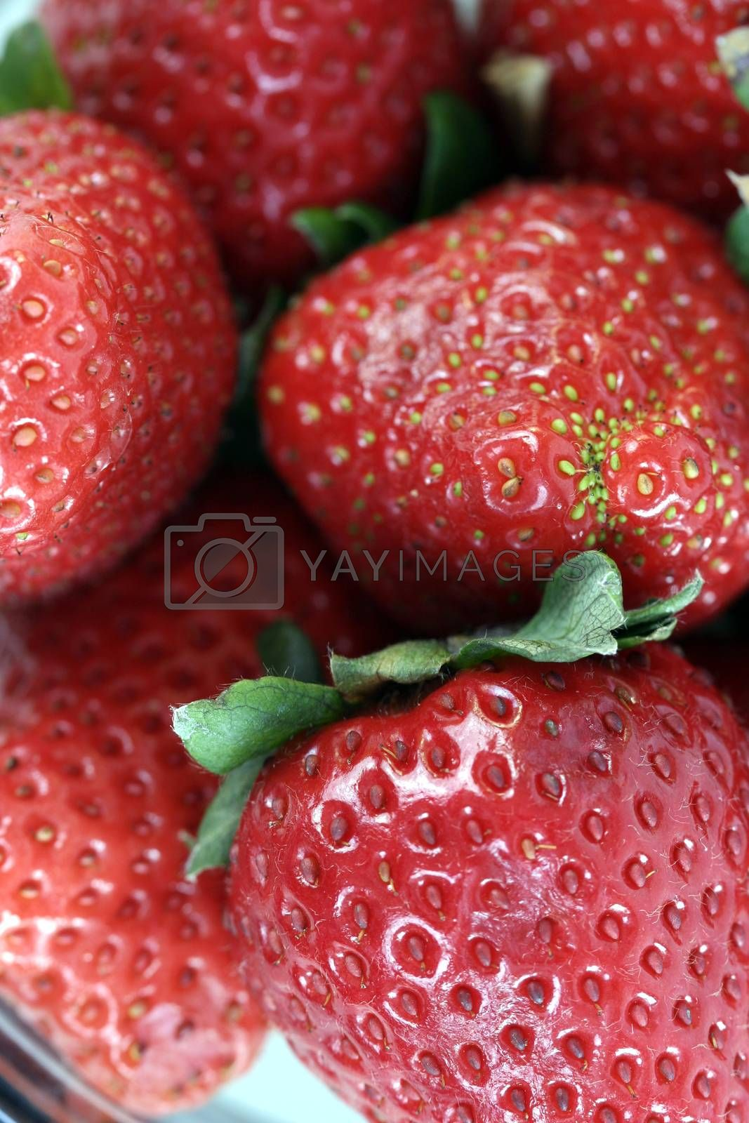 Macro picture of fresh and tasty strawberries .