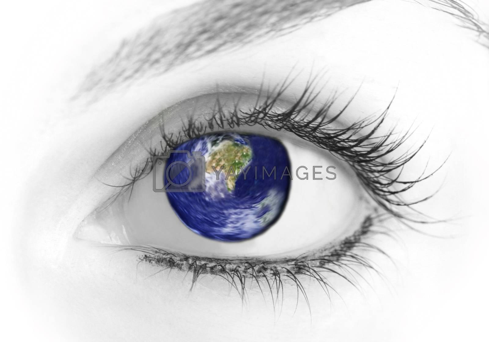 Beauty big eye. Macro. Isolated on white.