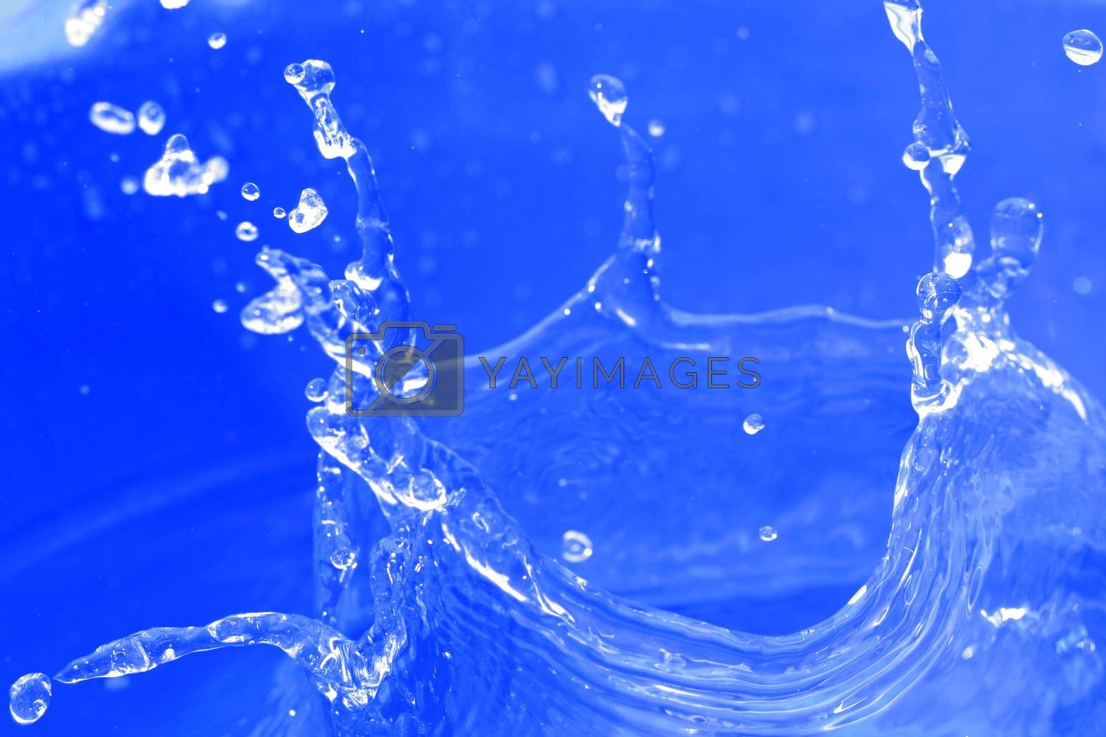 Macro image of water drops