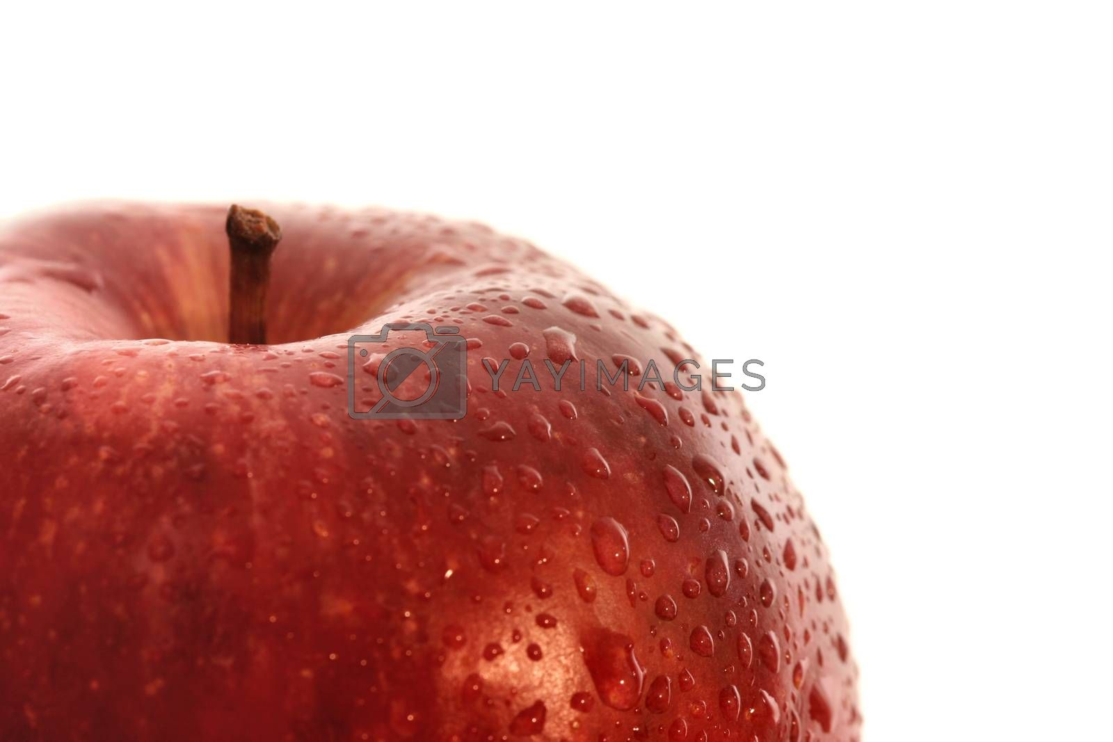 Macro image of a red apple