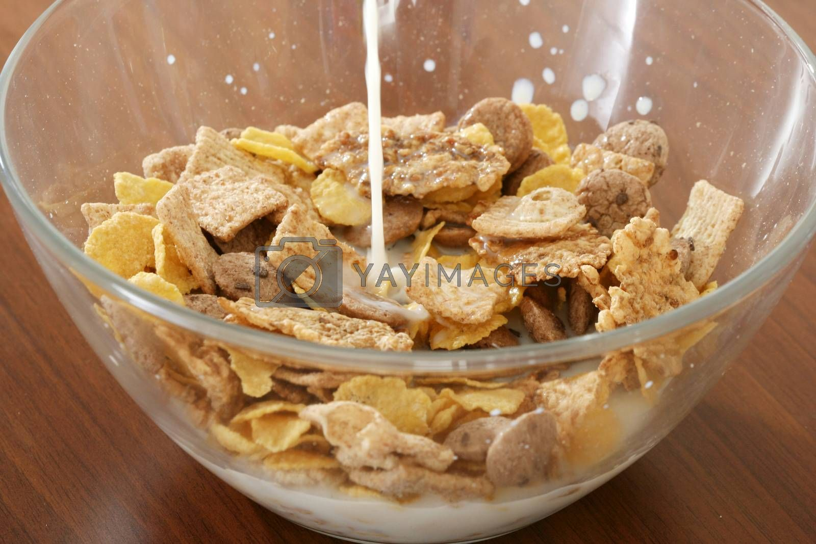 Royalty free image of Corn flakes by arosoft