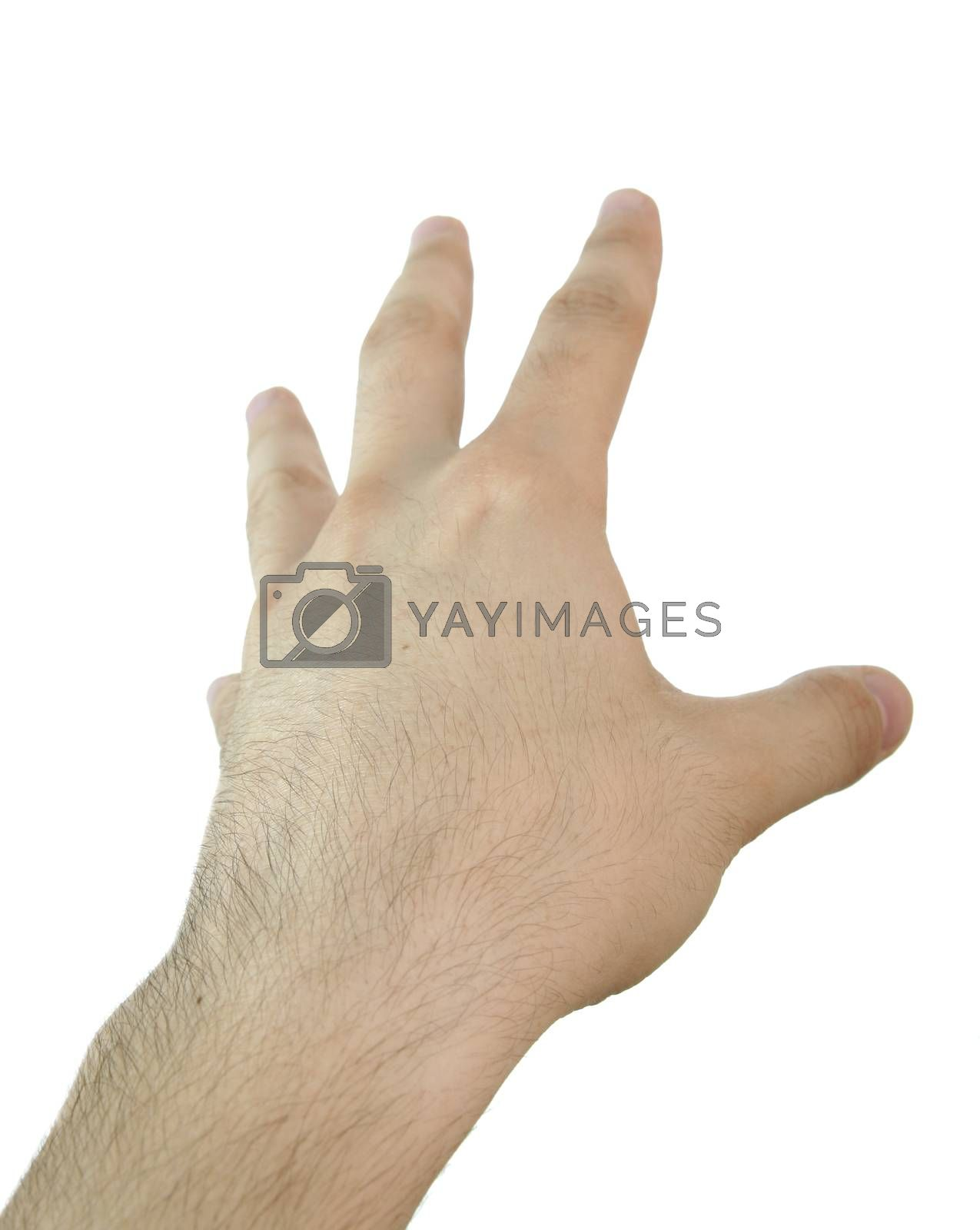 Royalty free image of Man hand. by arosoft