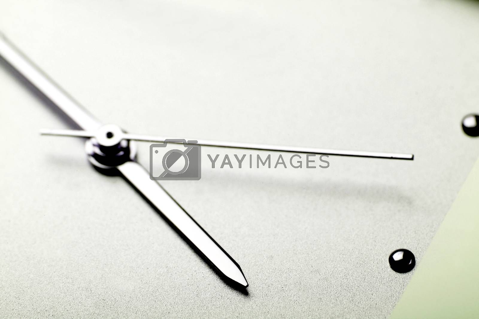 Royalty free image of Ladies watch. by arosoft