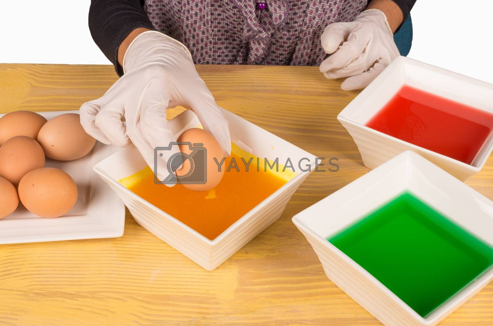 Hands with gloves getting ready to dye Easter eggs
