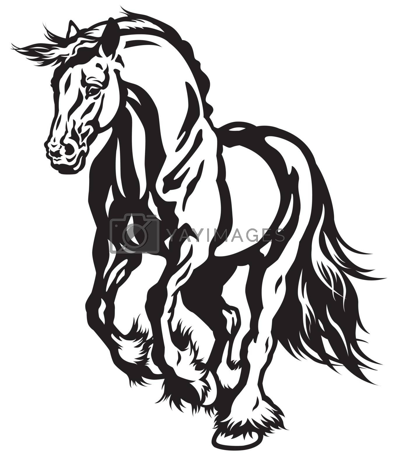 Running Horse Black White Royalty Free Stock Image Stock Photos Royalty Free Images Vectors Footage Yayimages