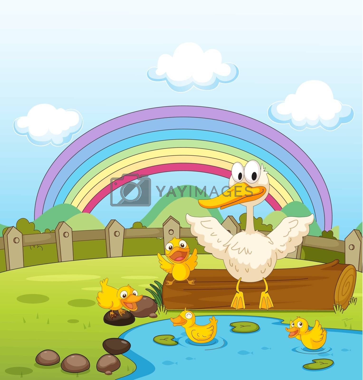 Illustration of ducks and a rainbow in nature