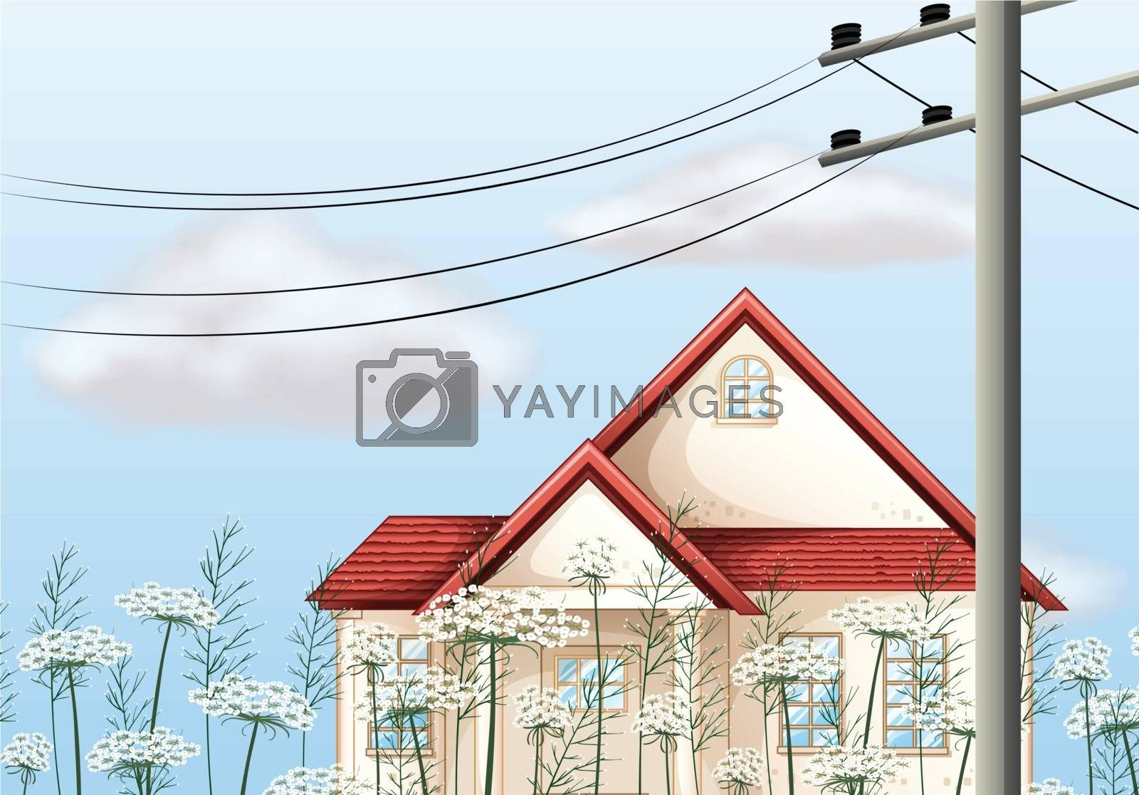 Illustration of a red color roof house
