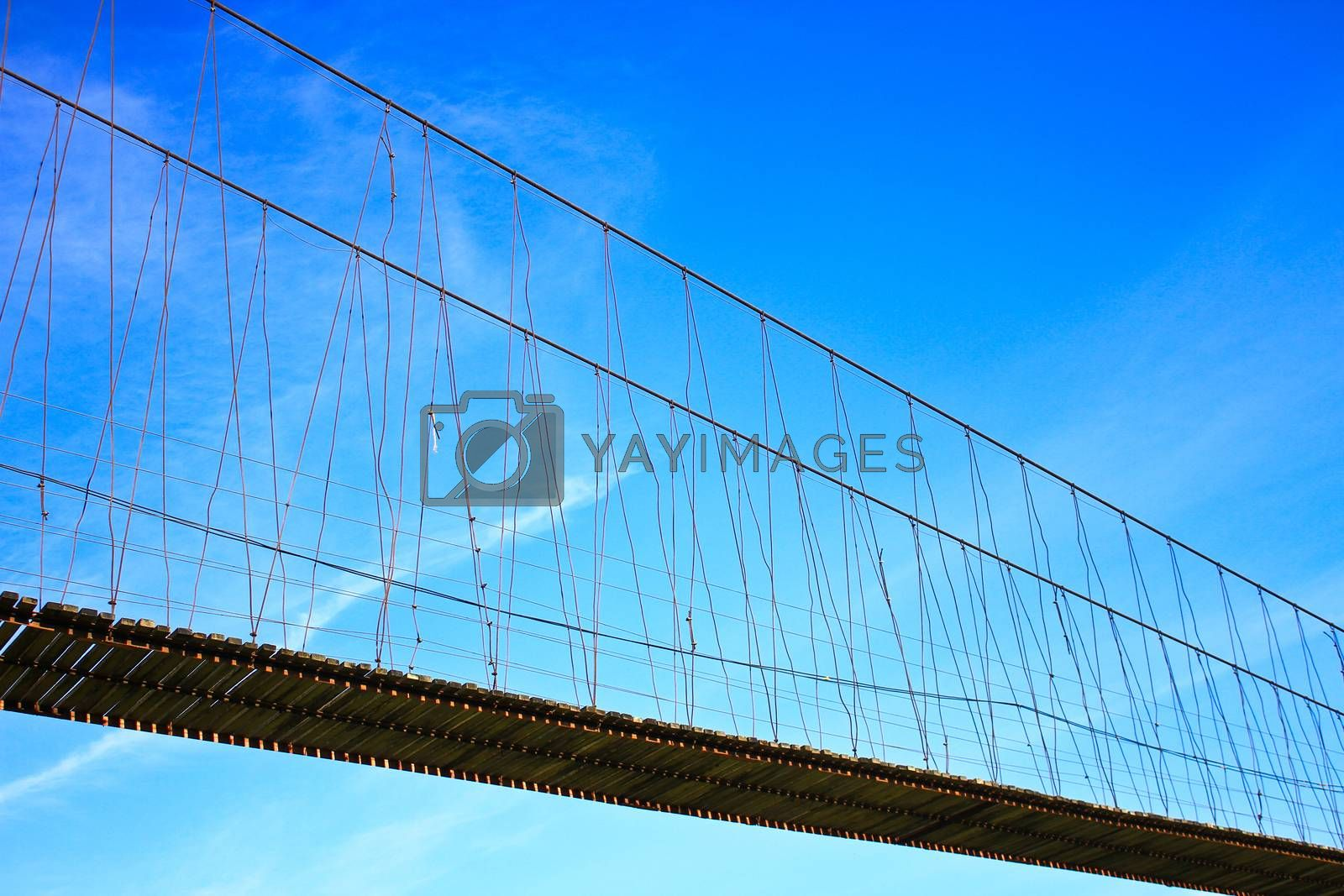 Royalty free image of Rope bridge  by forest71