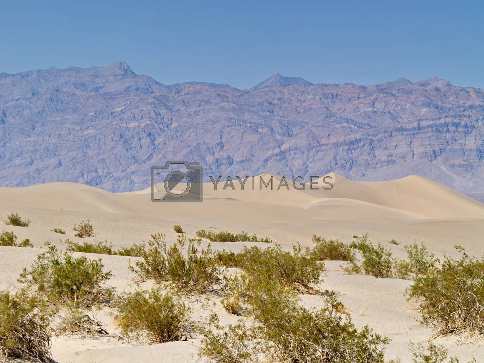Royalty free image of Sand dunes in Desert Valley, California, USA by anderm