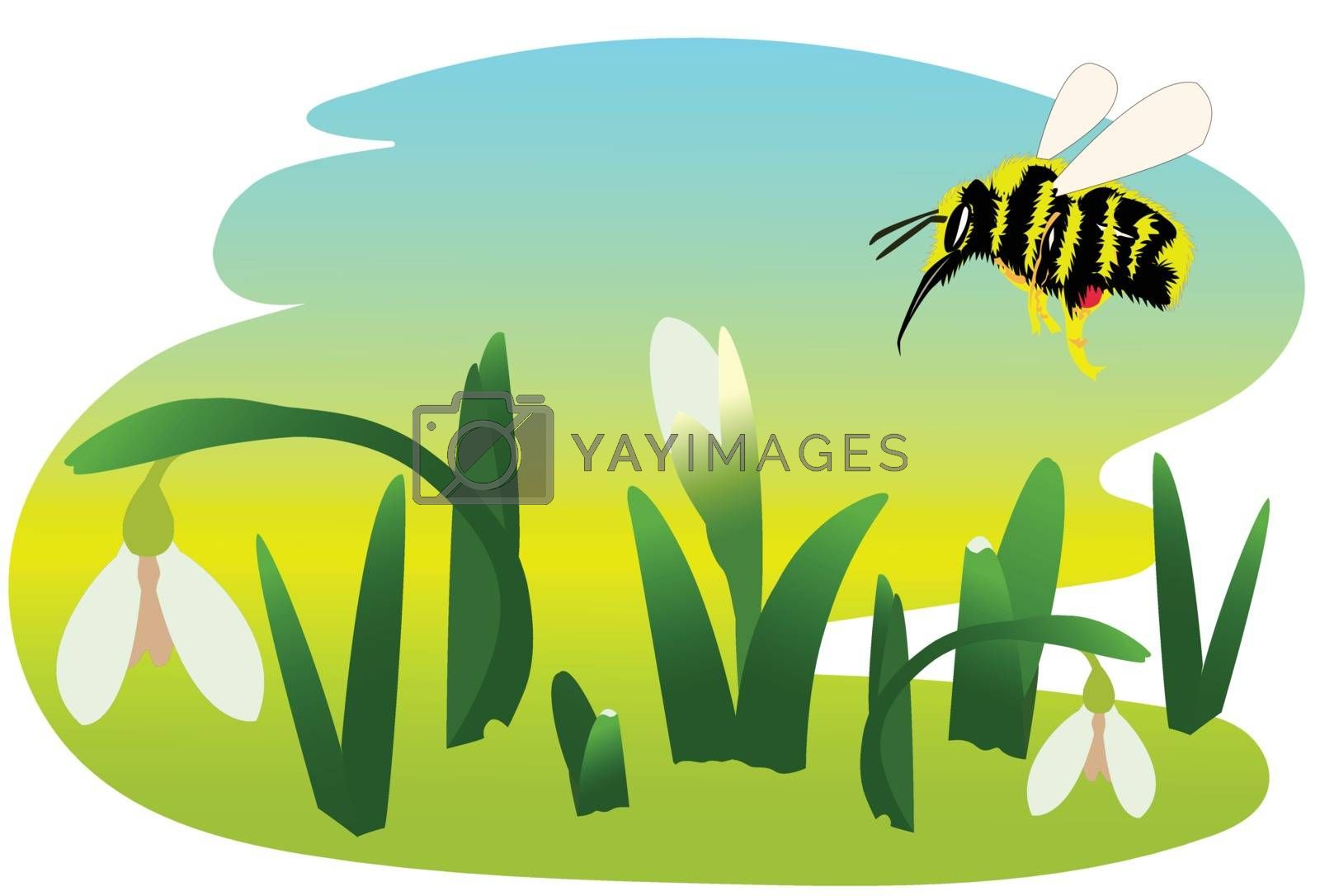 Royalty free image of Spring by Aimless