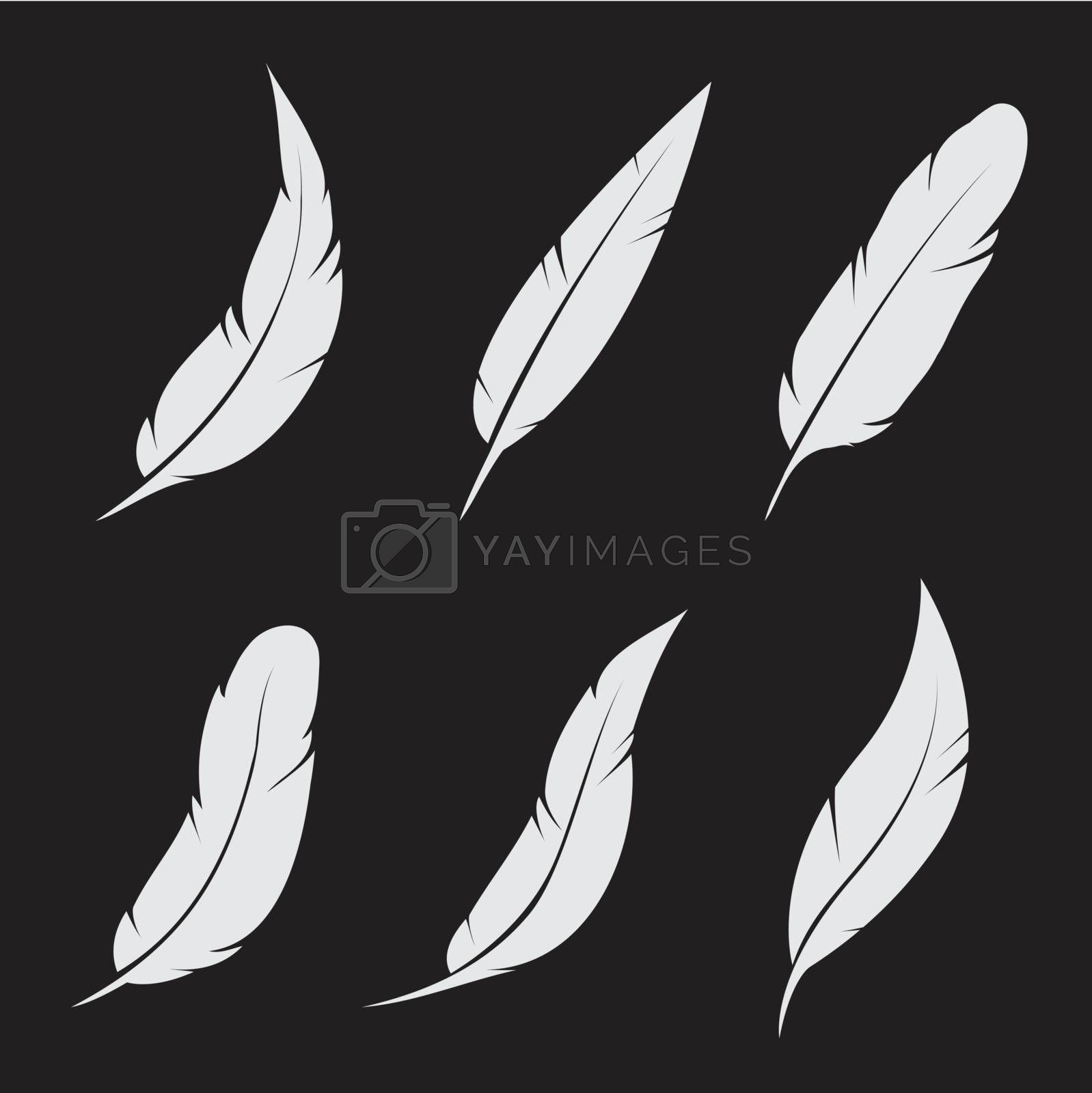 Royalty free image of Vector group of feather  by yod67