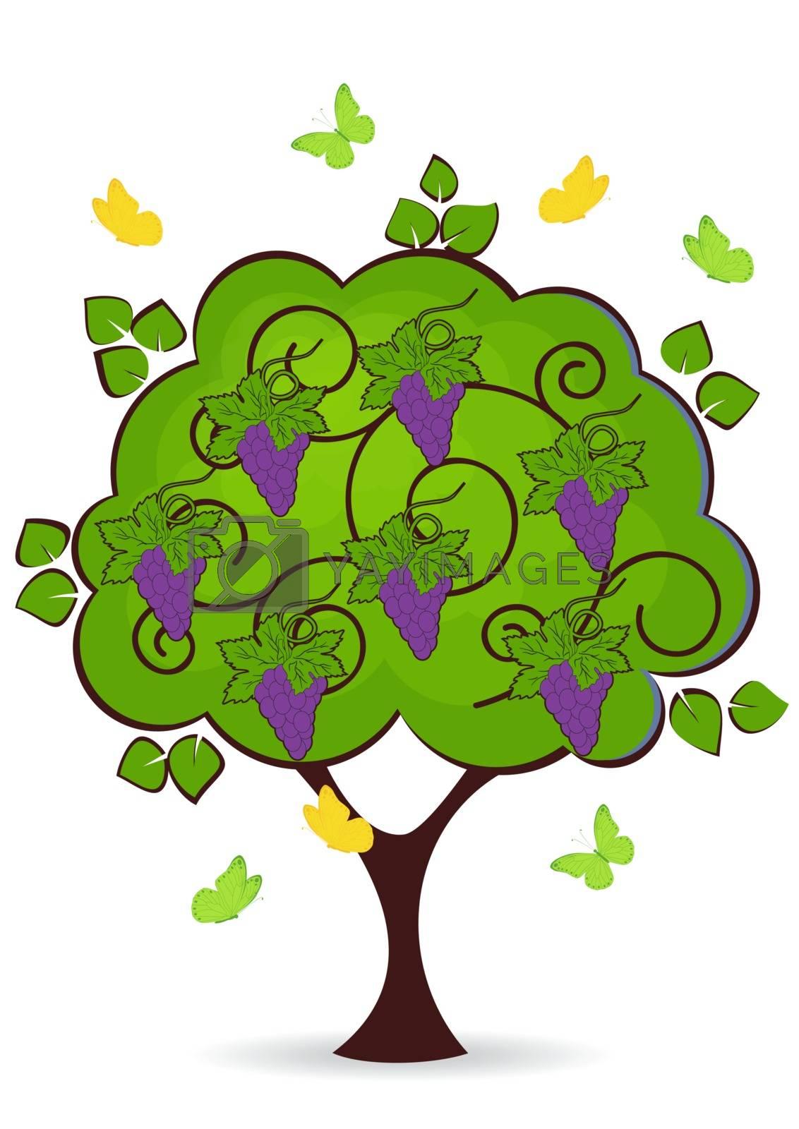 Royalty free image of grape tree by rodakm