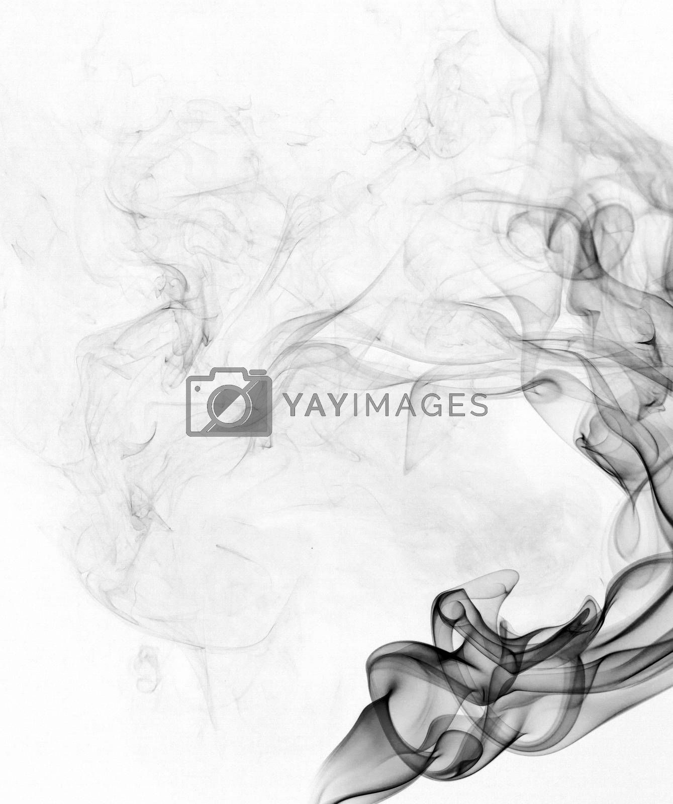 Royalty free image of Abstract smoke by Vagengeym