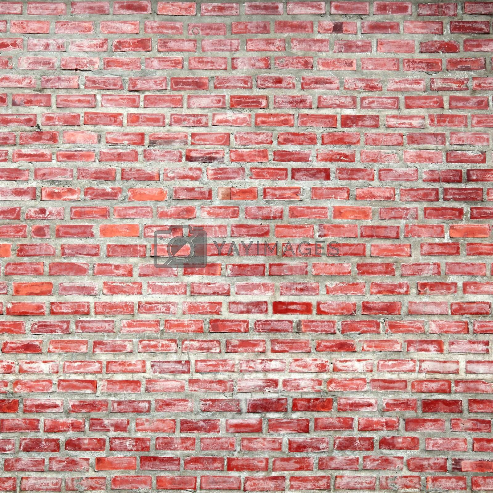 Royalty free image of Brick Wall by antpkr