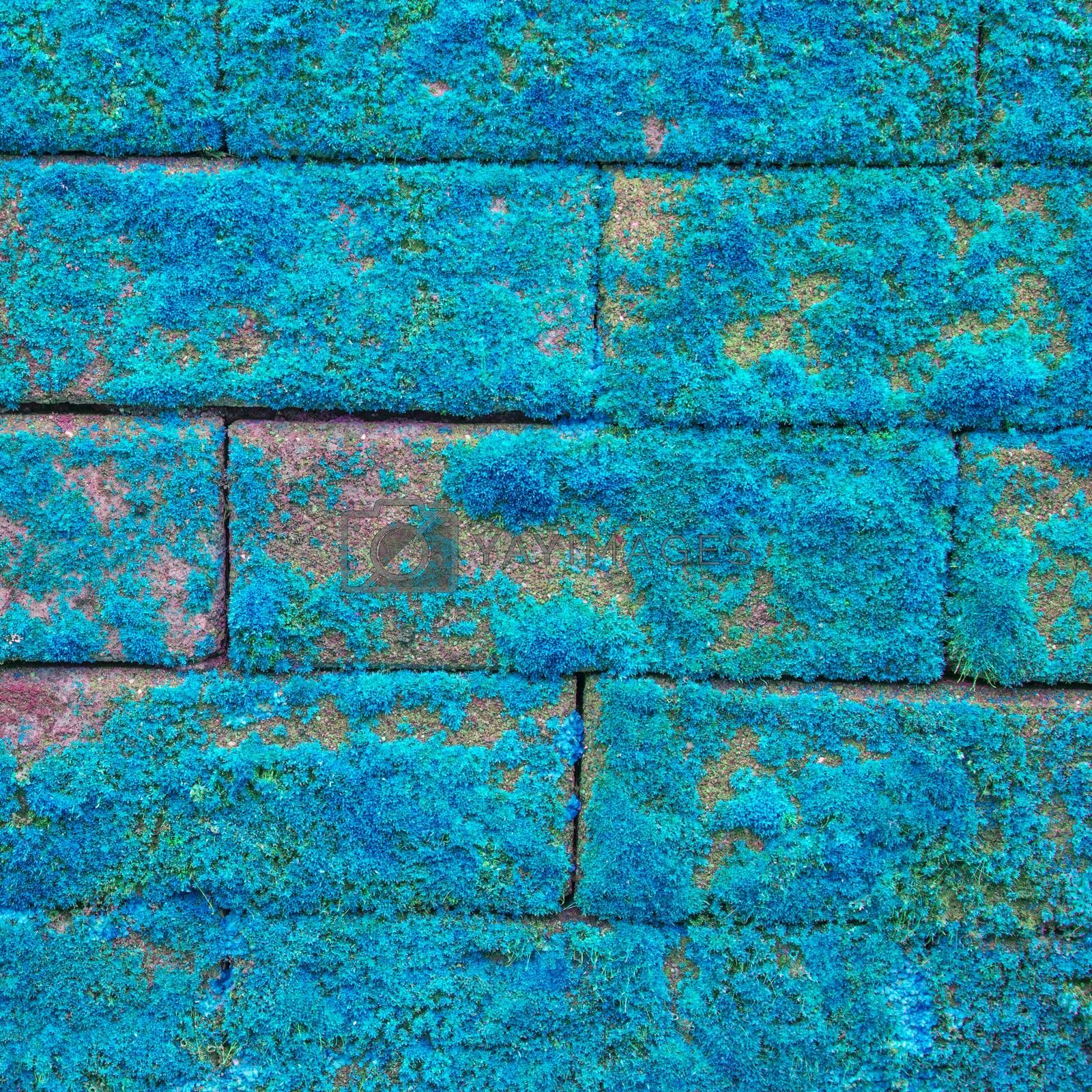 Royalty free image of Wall texture by tuchkay