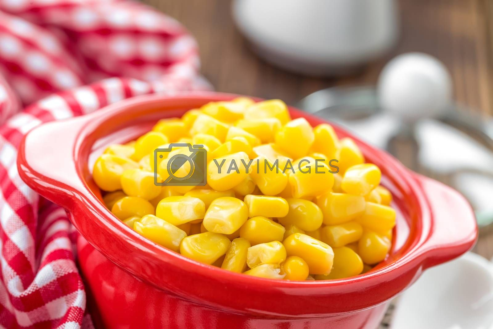Royalty free image of Corn by yelenayemchuk