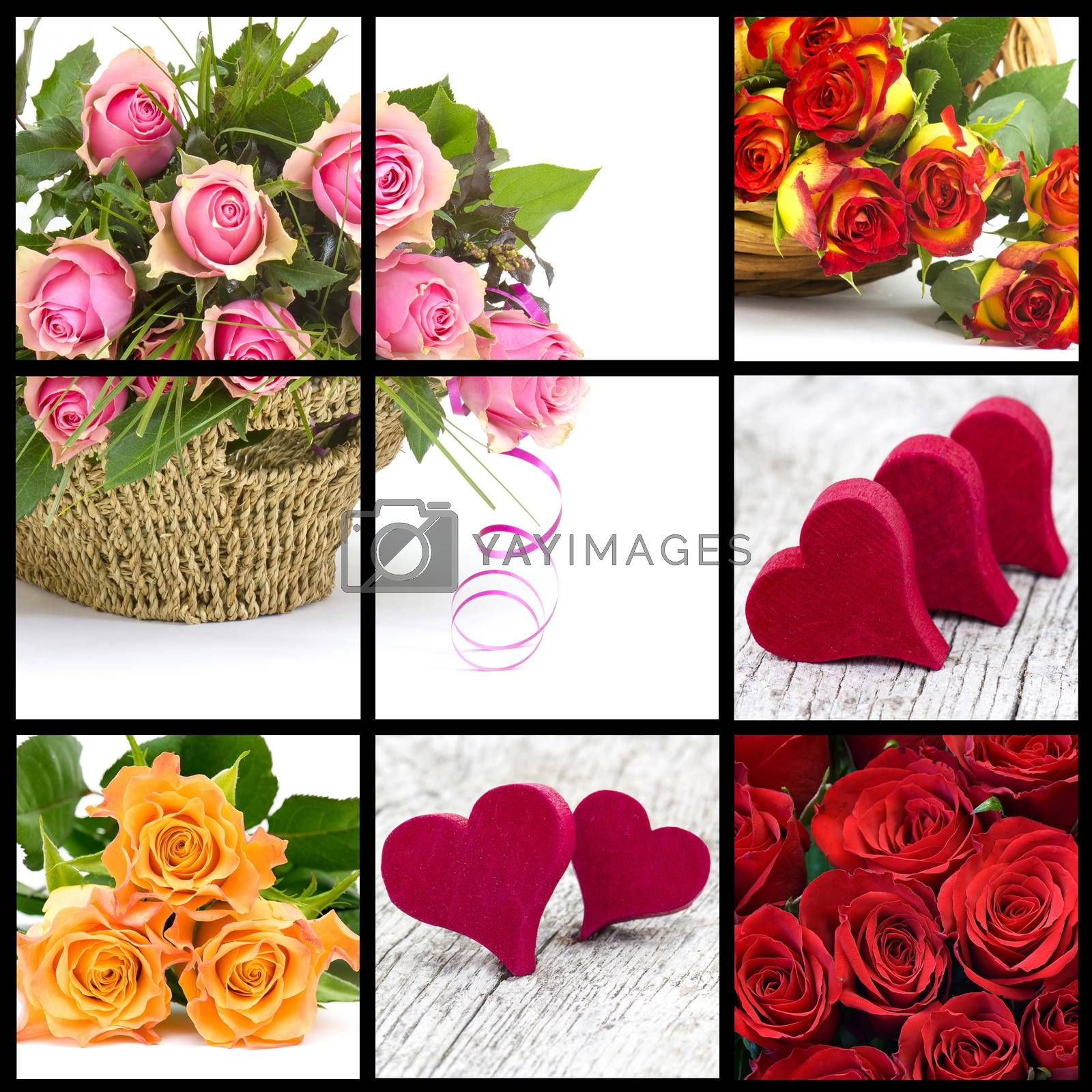 colourful roses and hearts - collage