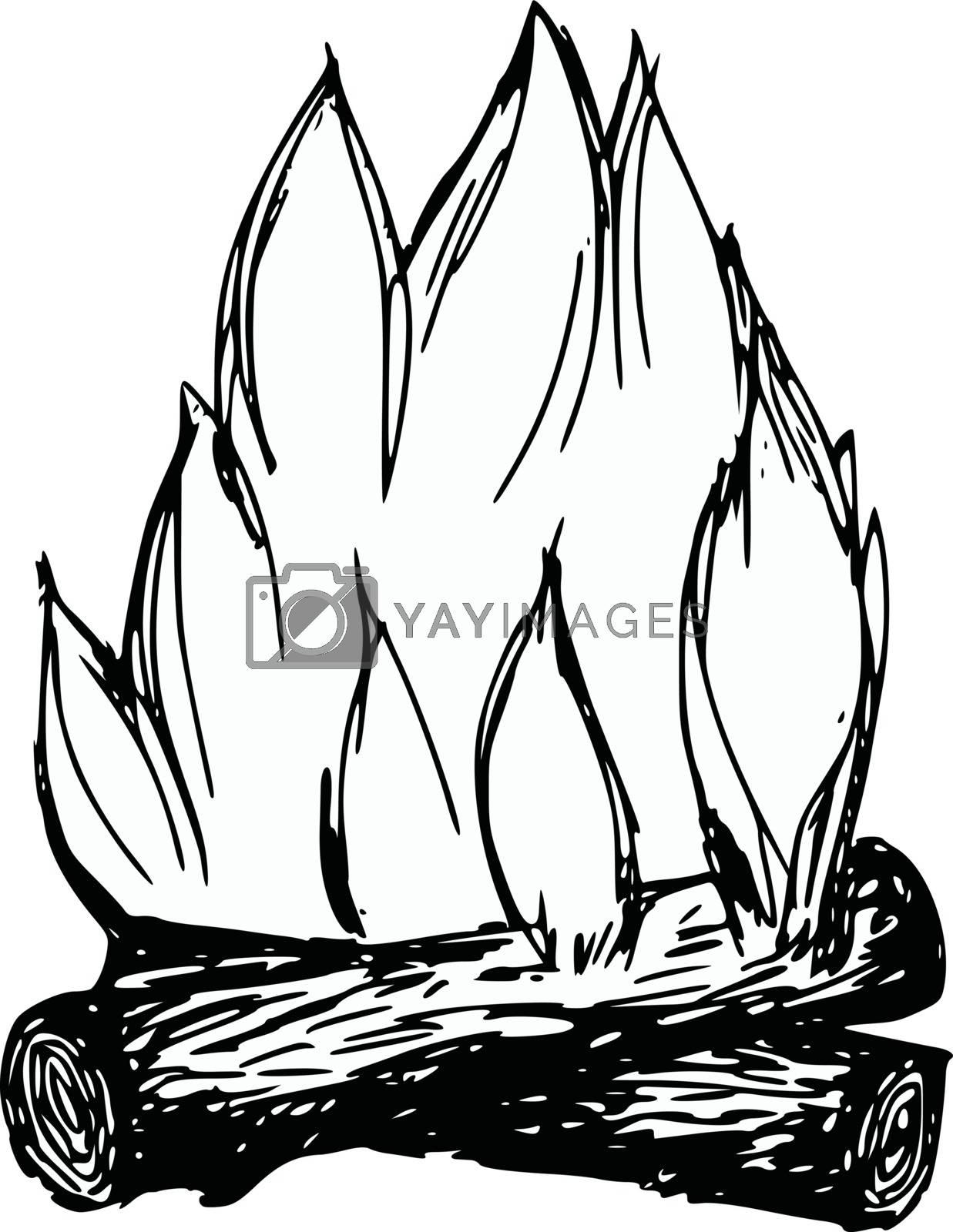 hand drawn, cartoon, sketch illustration of campfire