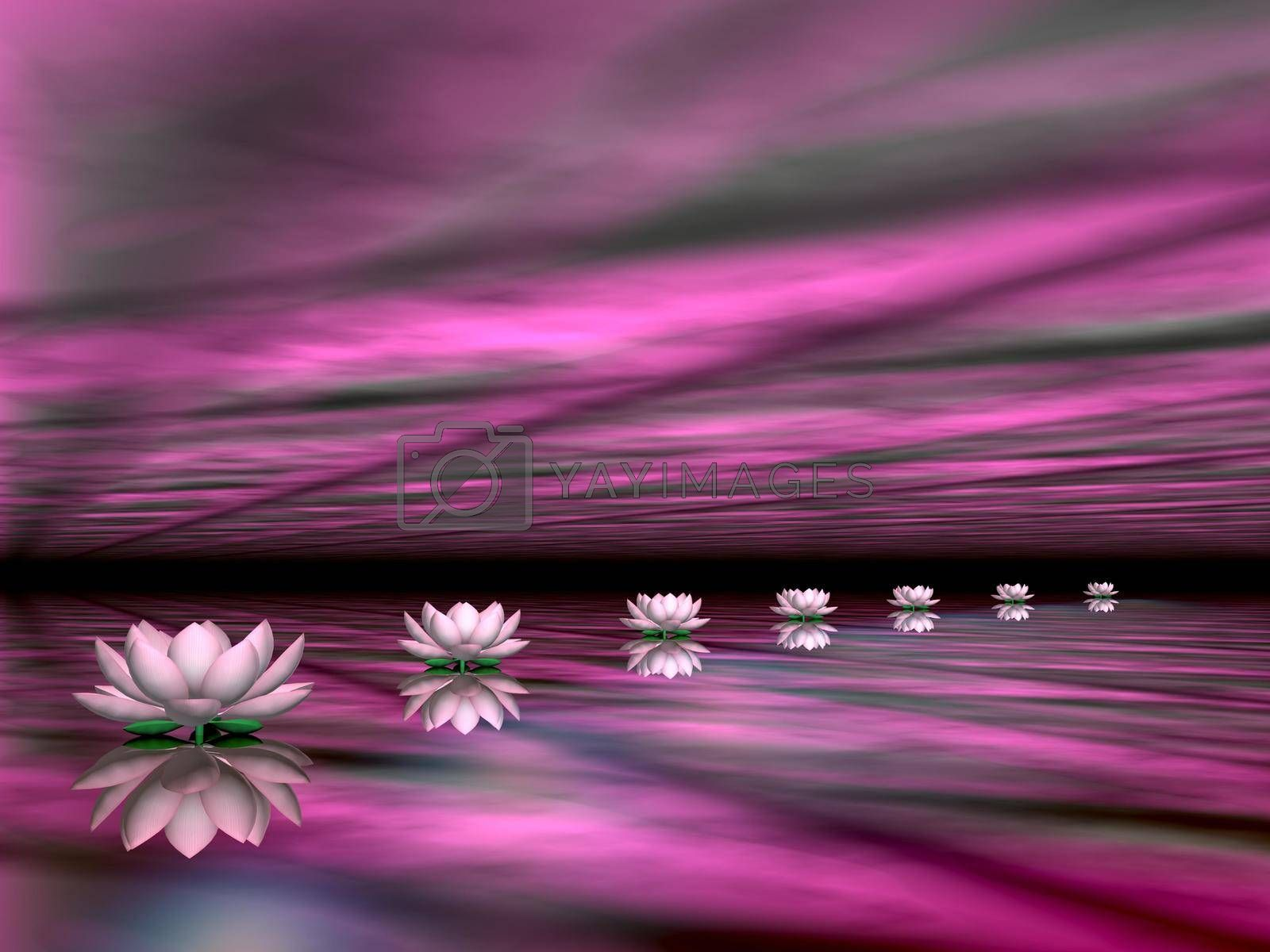 Water lilies steps to the sun - 3D render by Elenaphotos21