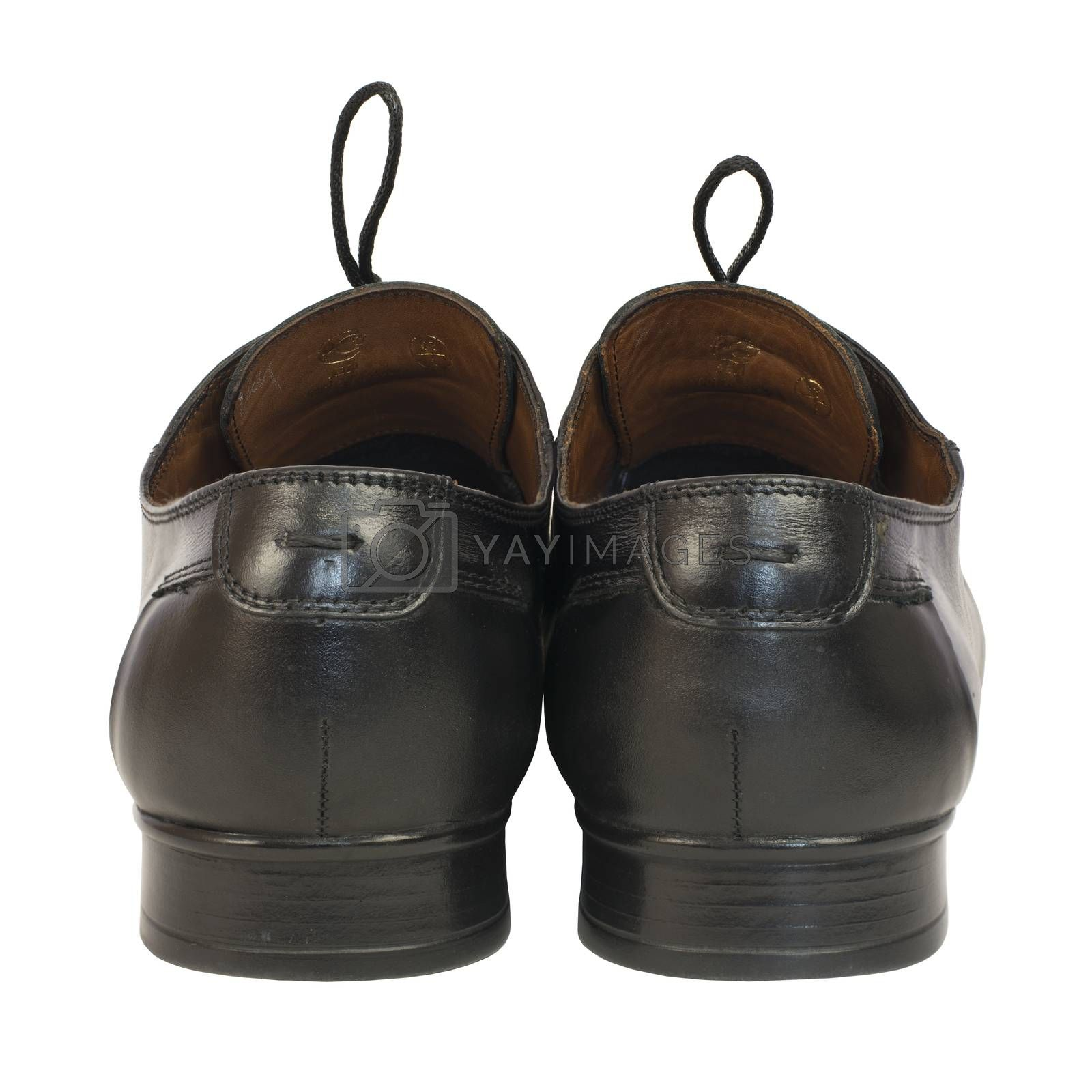 Pair of men's shoes in classic style by cherezoff