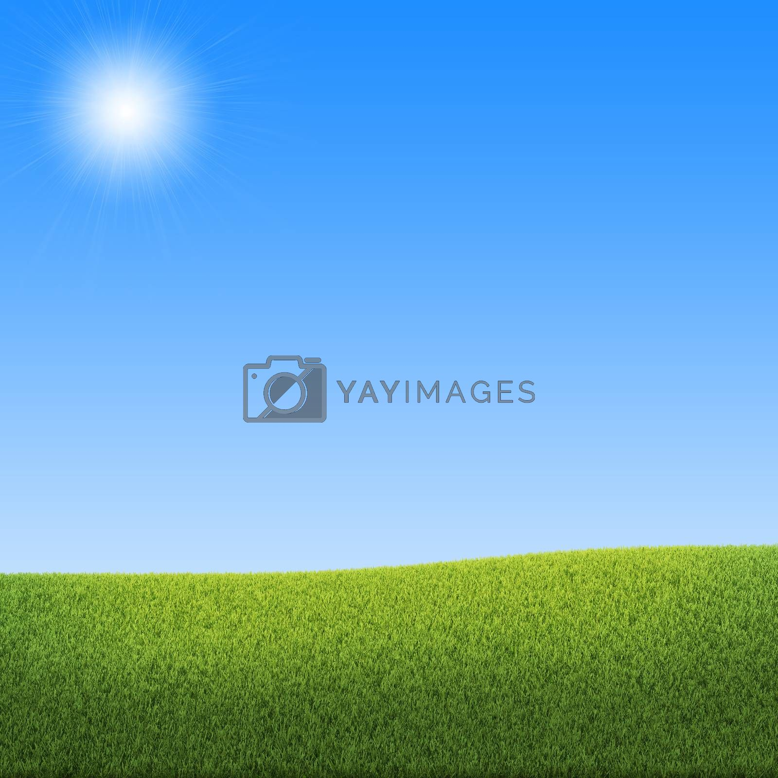Blue sky and green grass by cherezoff