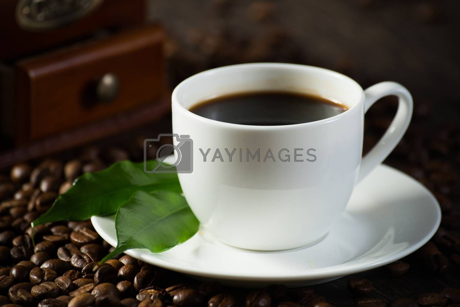 cup of black coffee by adam121