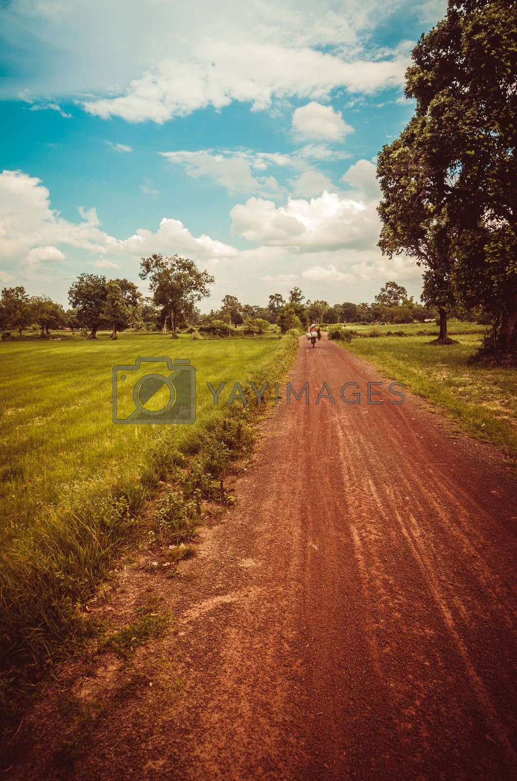 Road soil by sweetcrisis