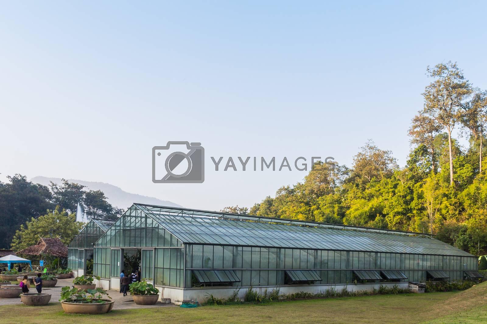 Greenhouse for growing tropical plants.  by sirichaiyaymicro