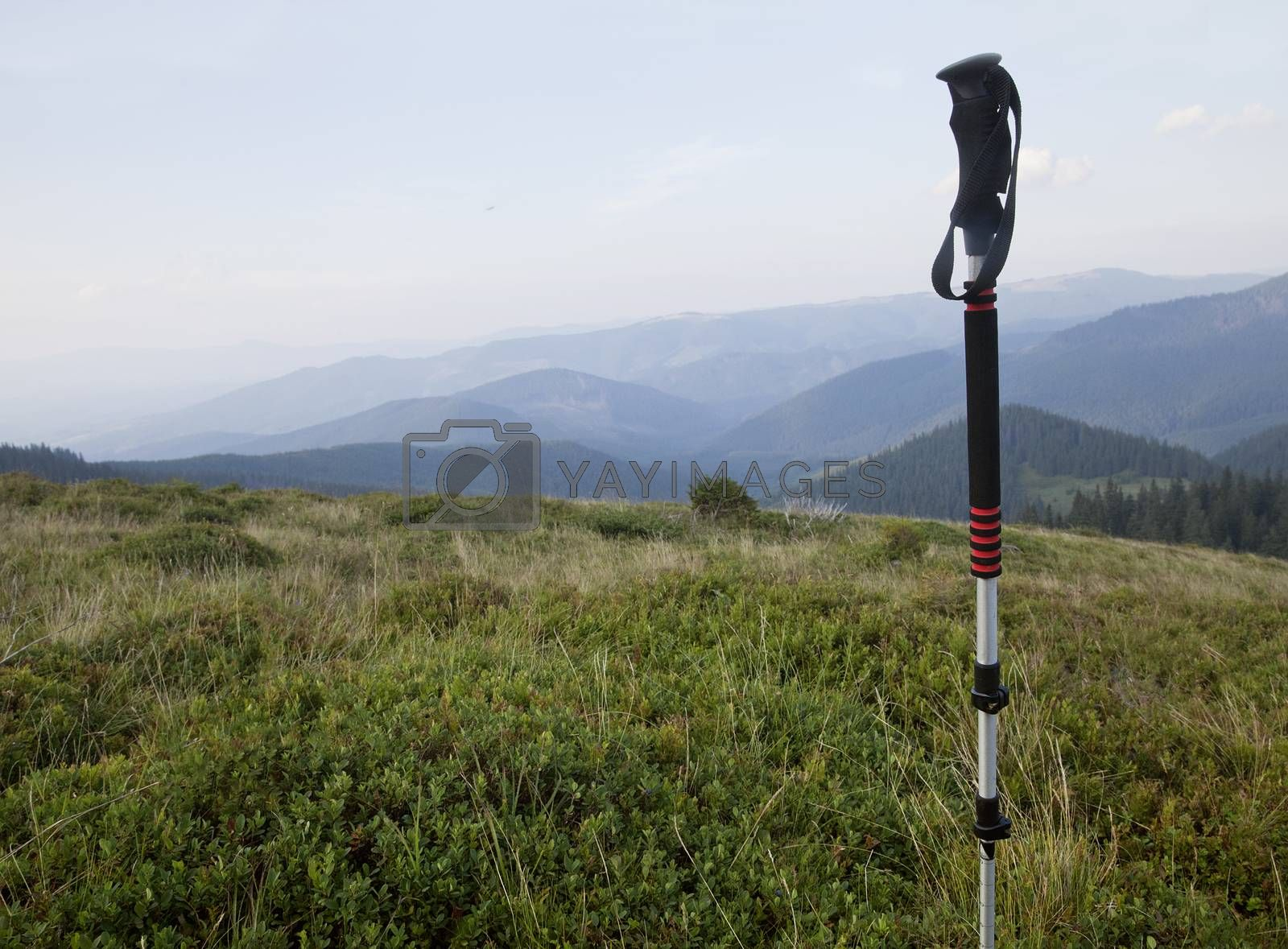 Hiking in Carpathian mountains by Goodday