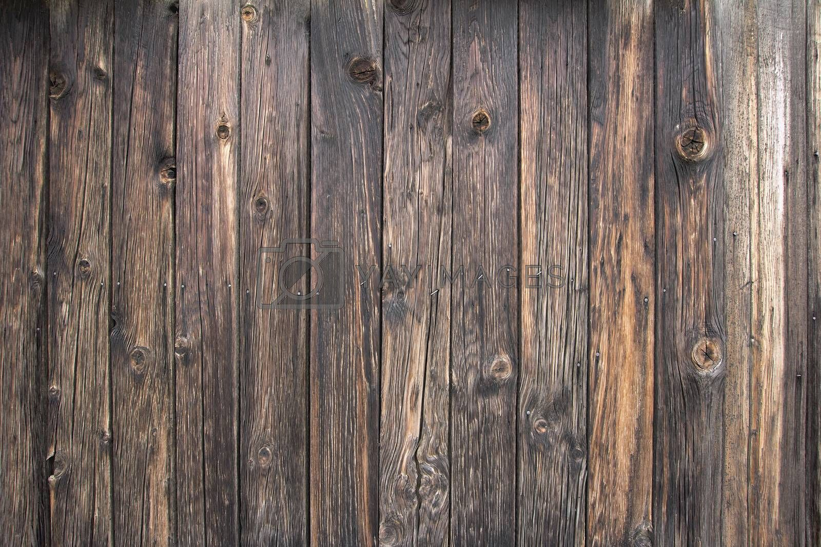 Royalty free image of Old Wood Shack Exterior Background by jpldesigns