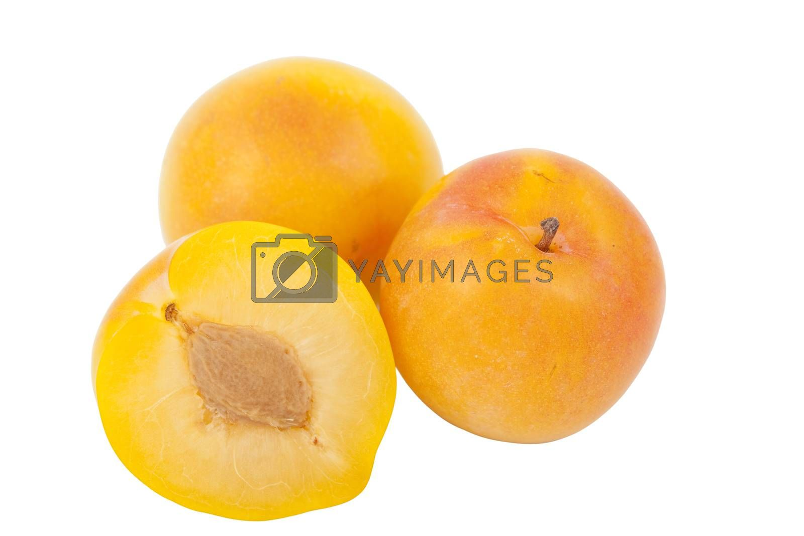 Royalty free image of yellow plum by dabjola
