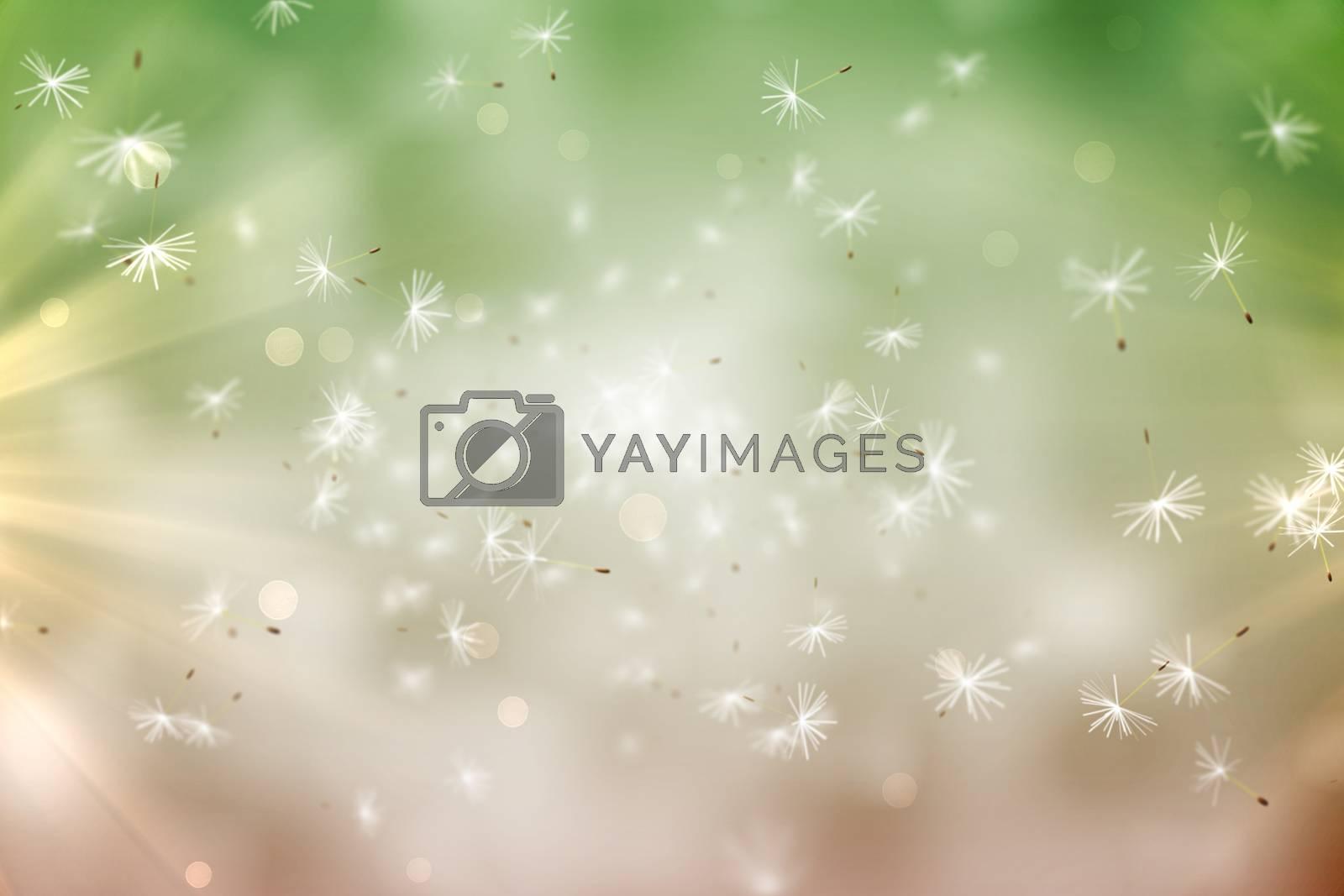 Royalty free image of Digitally generated dandelion seeds on green background by Wavebreakmedia