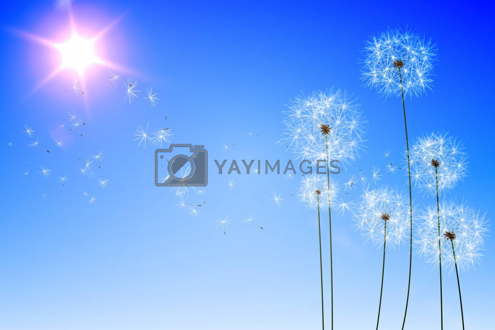 Royalty free image of Digitally generated dandelions against blue sky by Wavebreakmedia