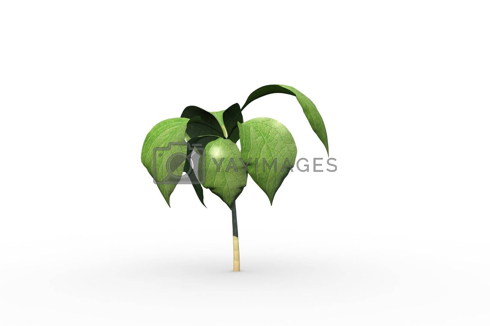 Royalty free image of Little green seedling with leaves growing by Wavebreakmedia