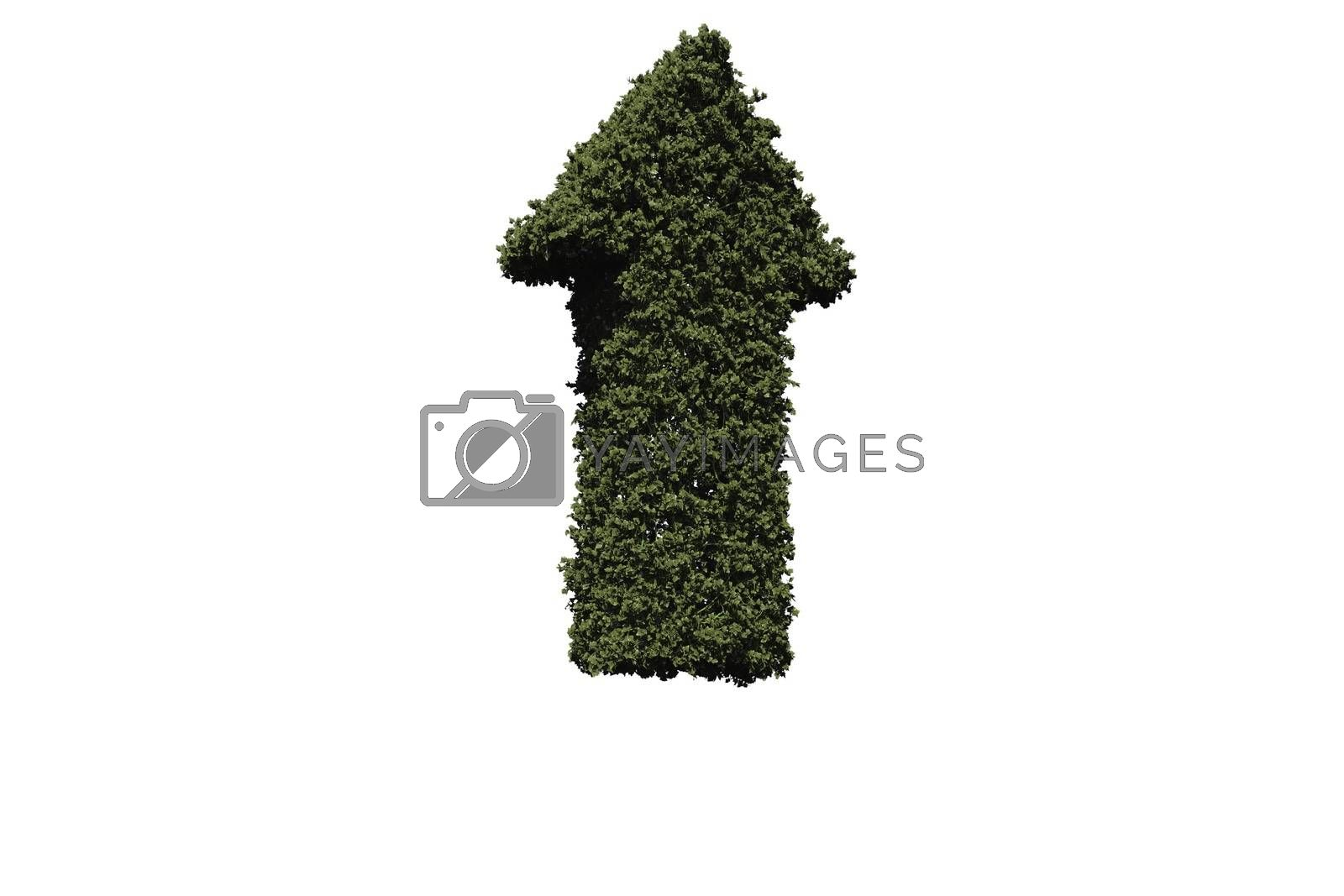 Royalty free image of Green arrow made of leaves by Wavebreakmedia