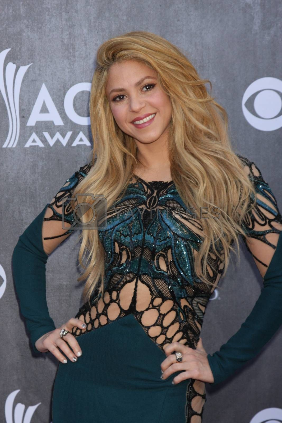 Shakira at the 2014 Academy of Country Music Awards Arrivals, MGM Grand Garden Arena, Las Vegas, NV 04-06-14