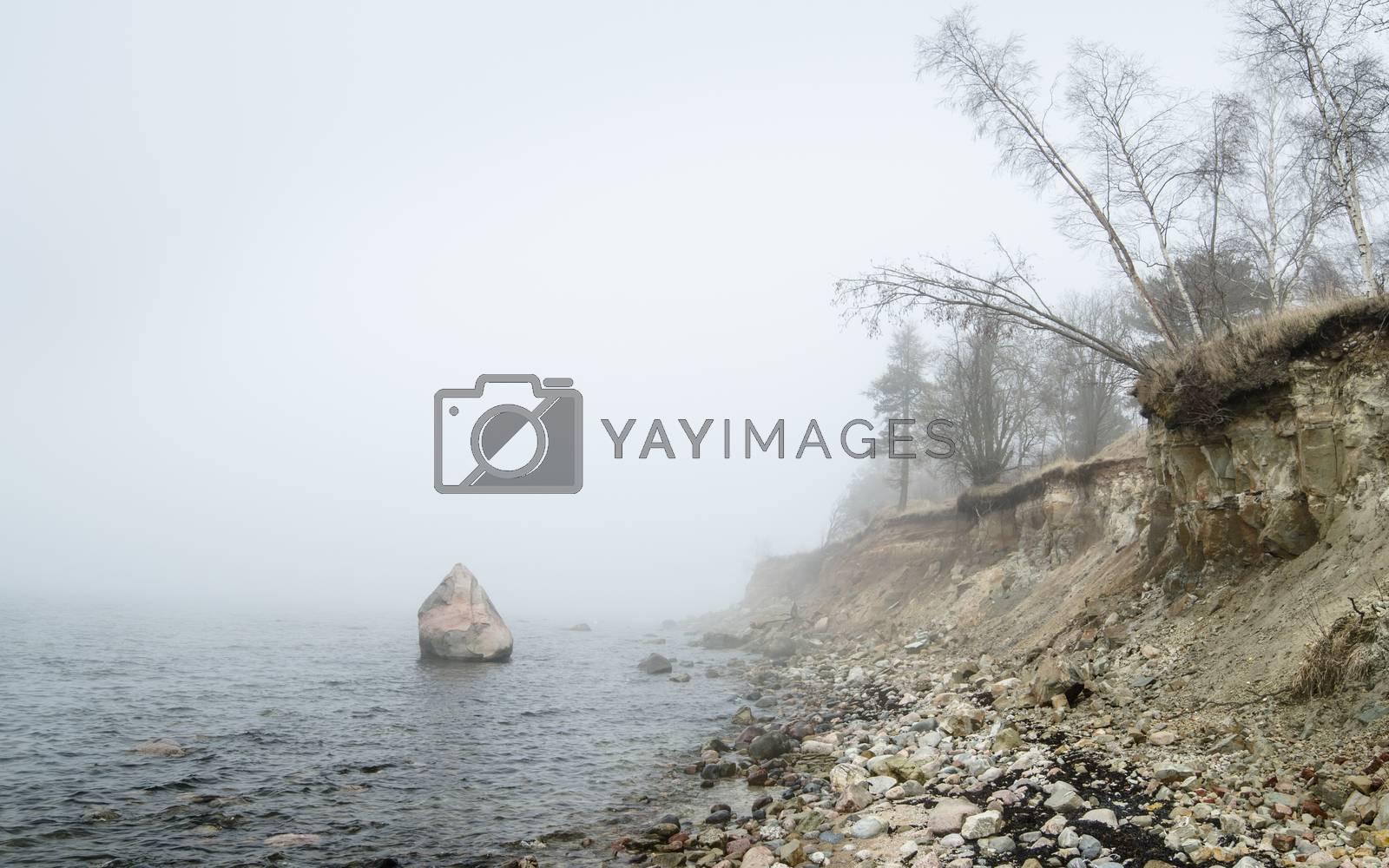 Steep coast of Baltic sea in a fog