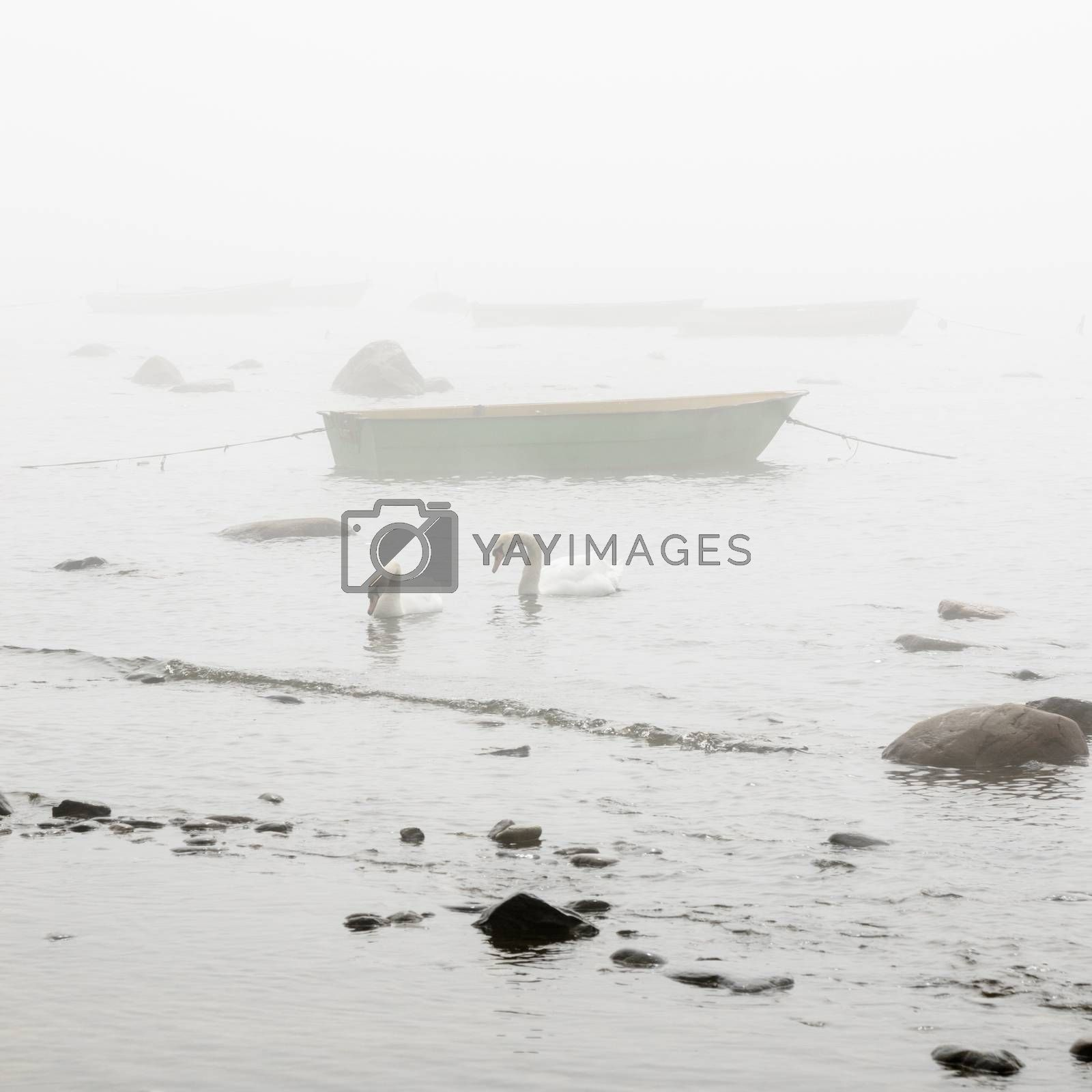 Fishing boat at coast foggy in the morning