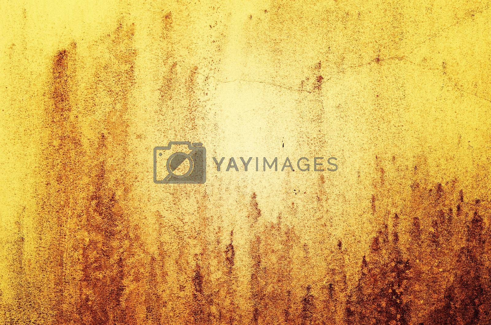 wall, perfect as a background, square photograph