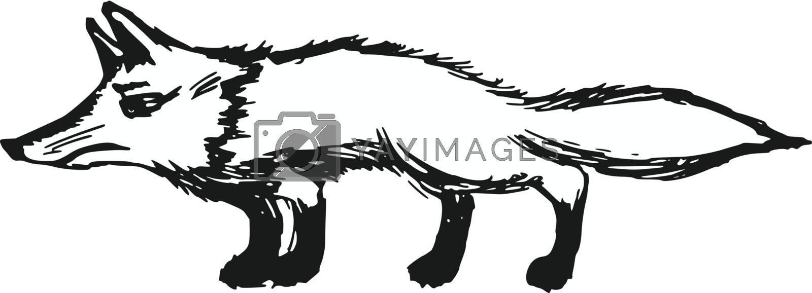 hand drawn, sketch, cartoon illustration of red fox
