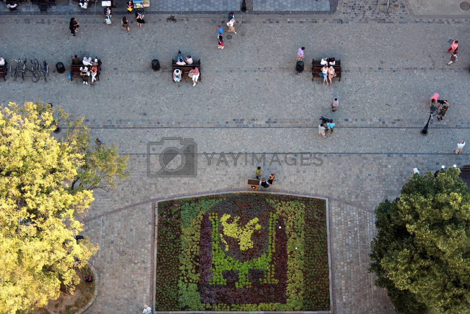 street in Lvov with many people from above