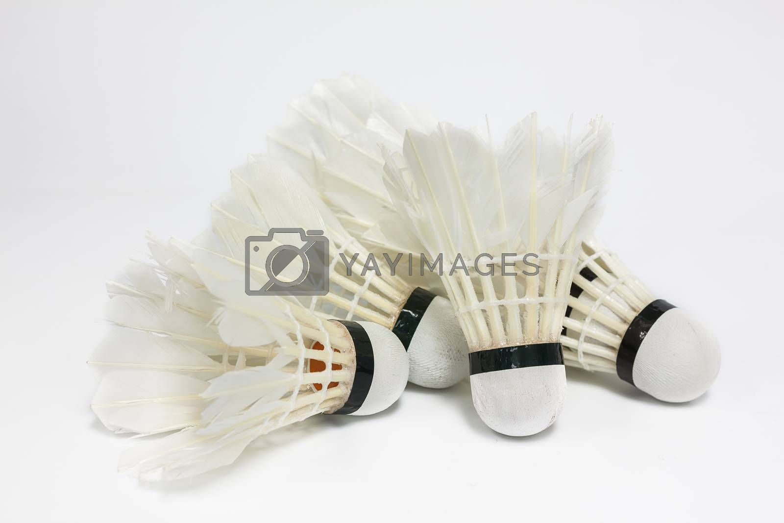 Royalty free image of Used shuttlecock by hadkhanong