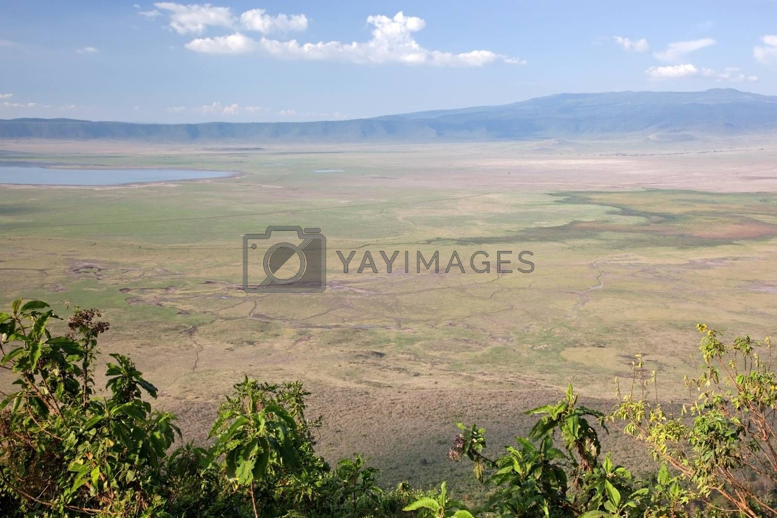 Royalty free image of Ngorongoro crater in Tanzania, Africa. Panorama by photocreo