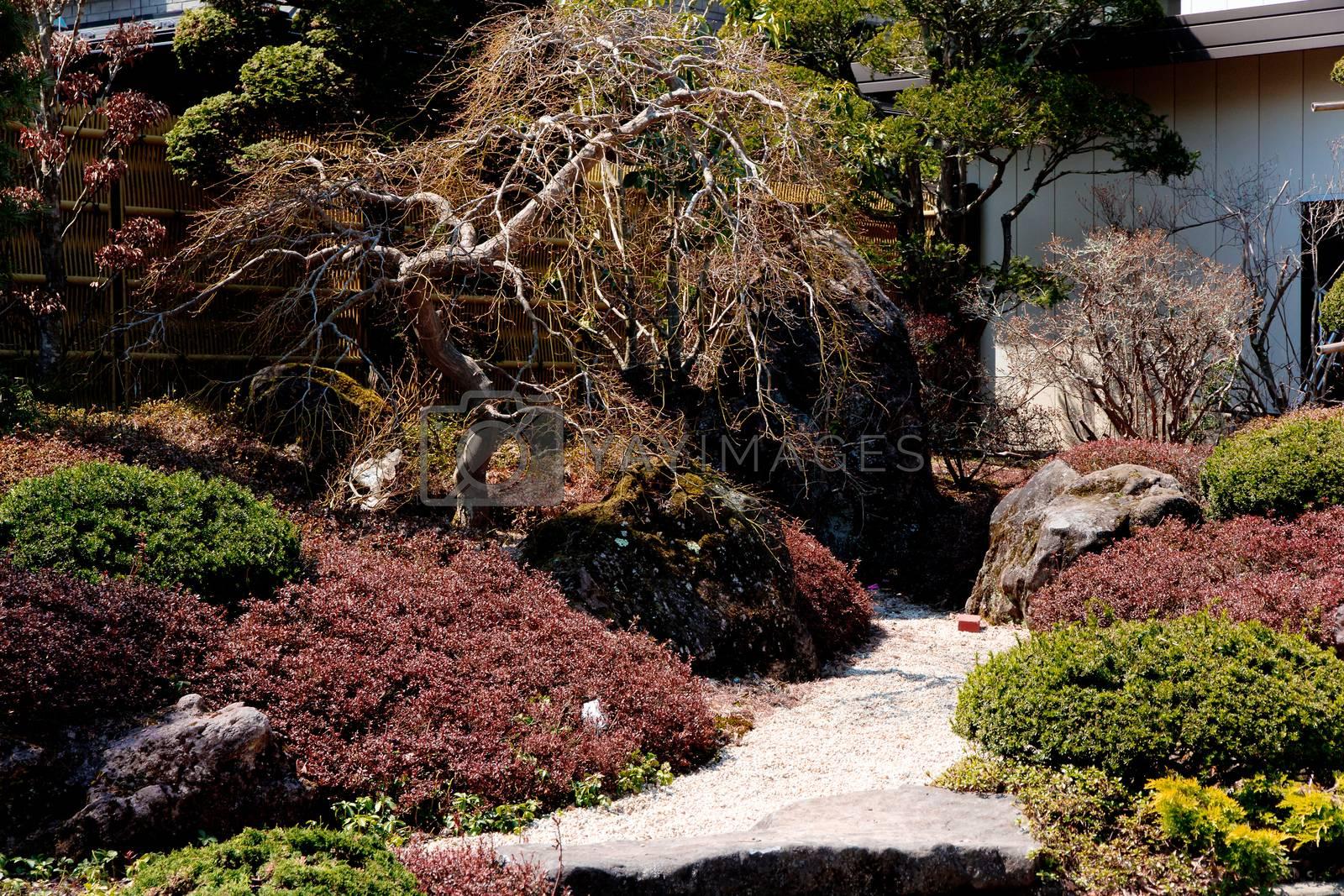 Japanese garden background by ponsulak