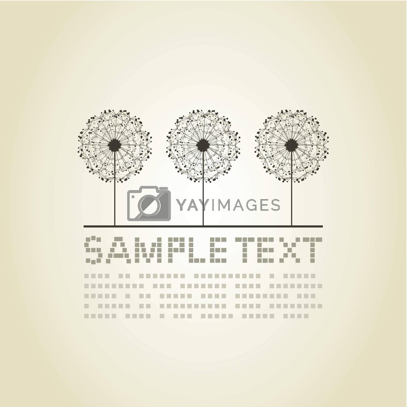 Three dandelions on a grey background