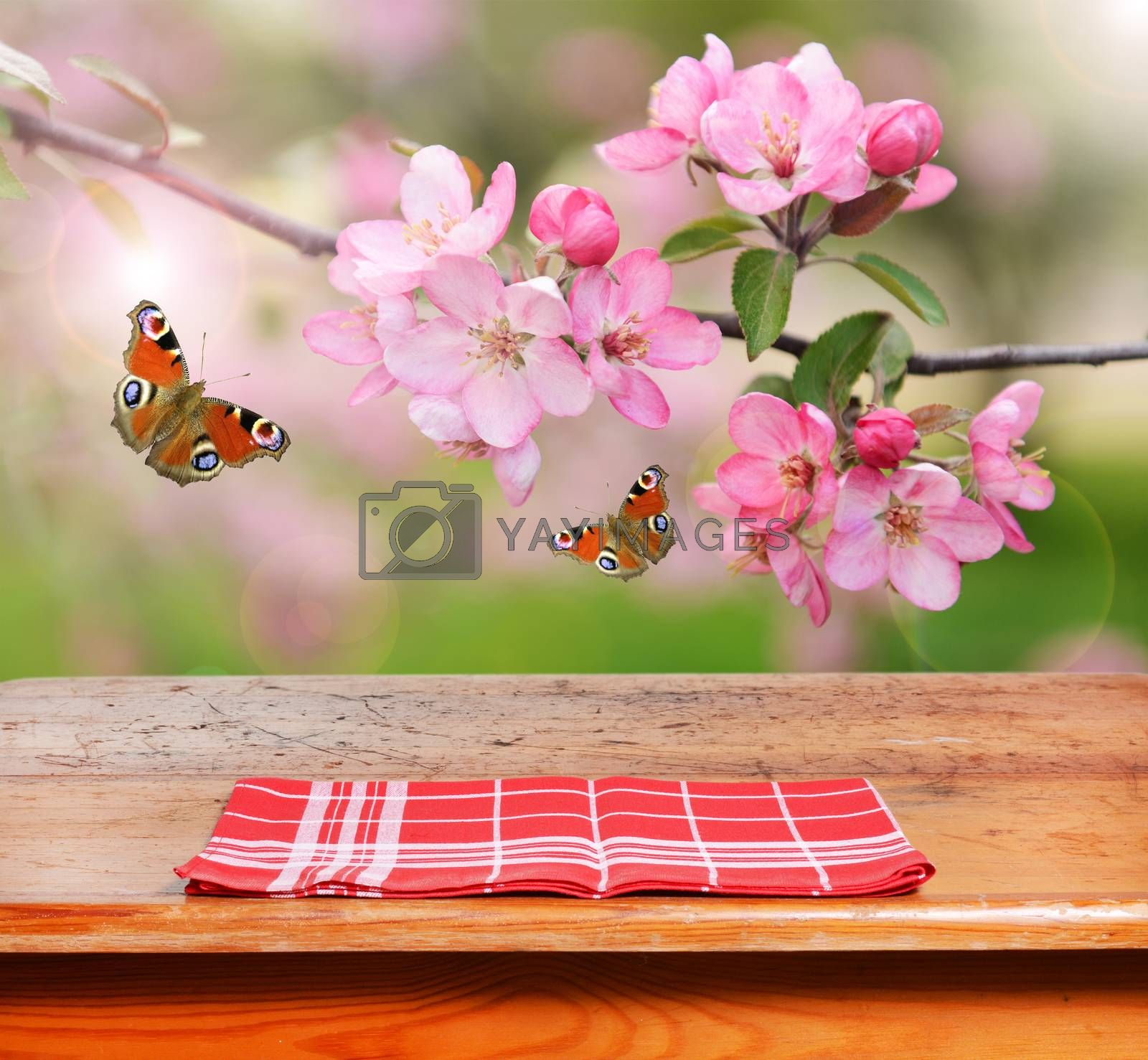 empty table and spring flowers in background